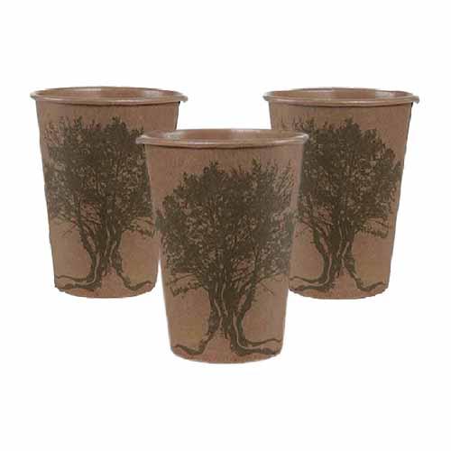 Bicchieri ulivo mediterraneo 10 pezzi